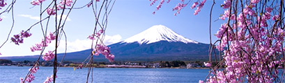 Latest Offers-china,-hong-kong-and-japan