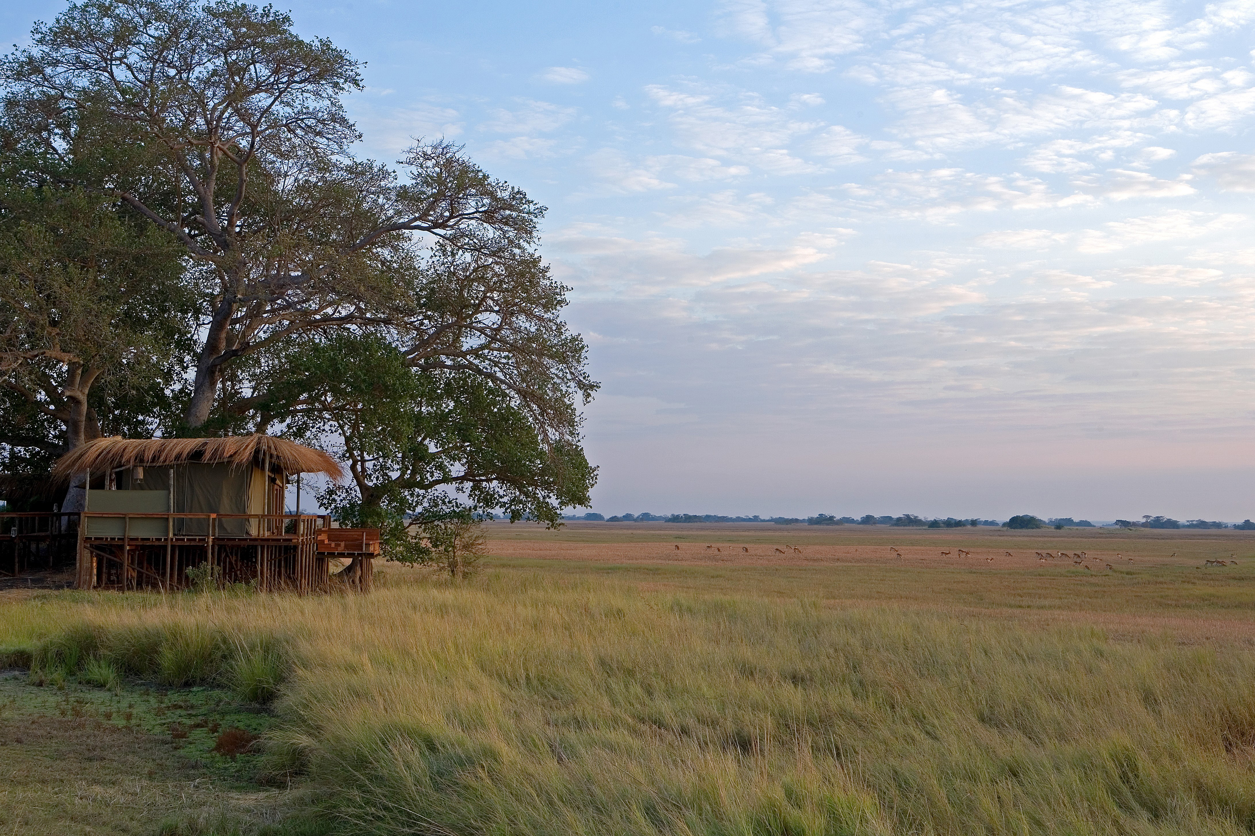 hotels in kafue national park