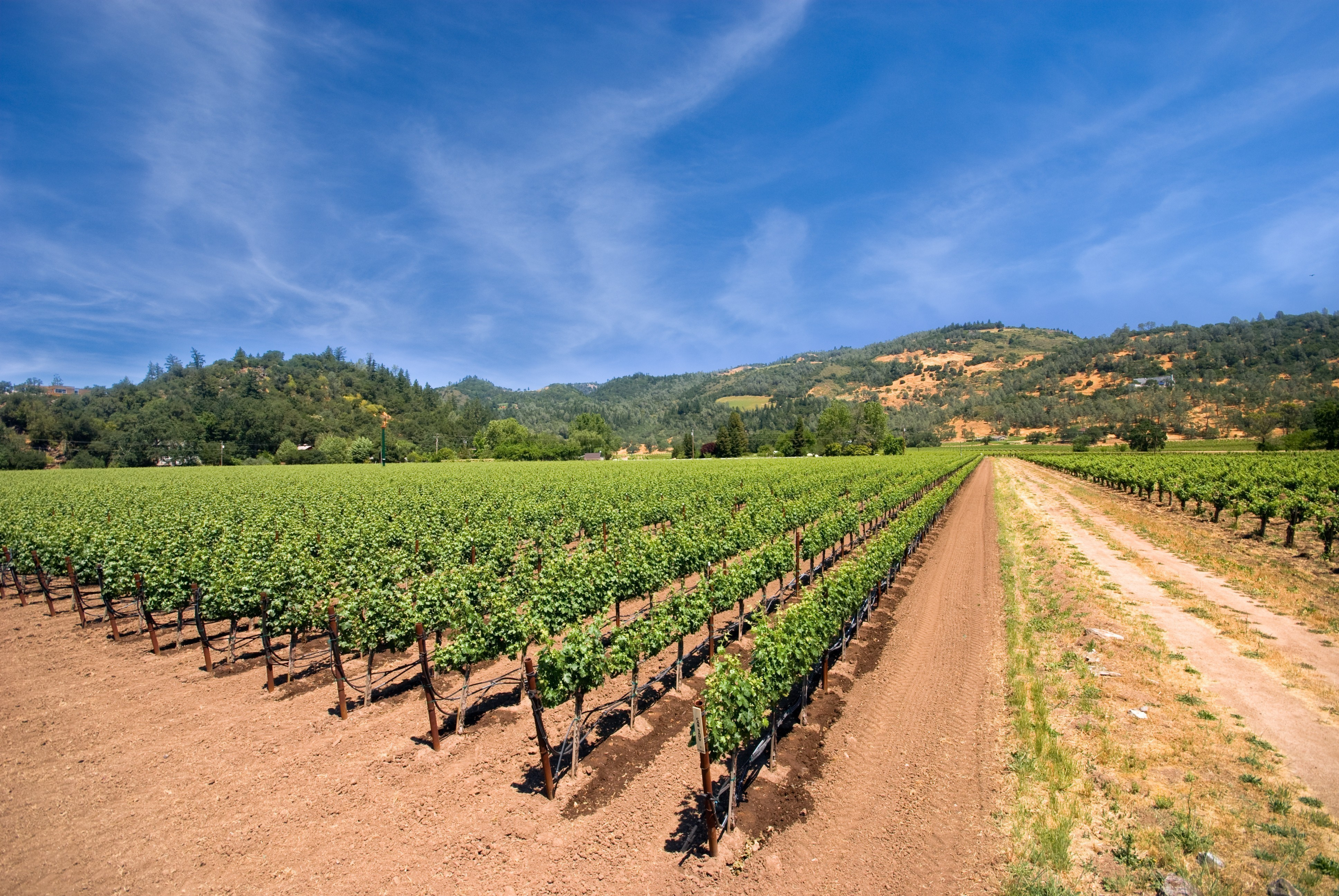hotels in california wine country