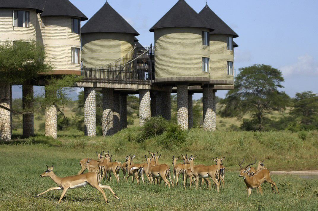 hotels in tsavo national park